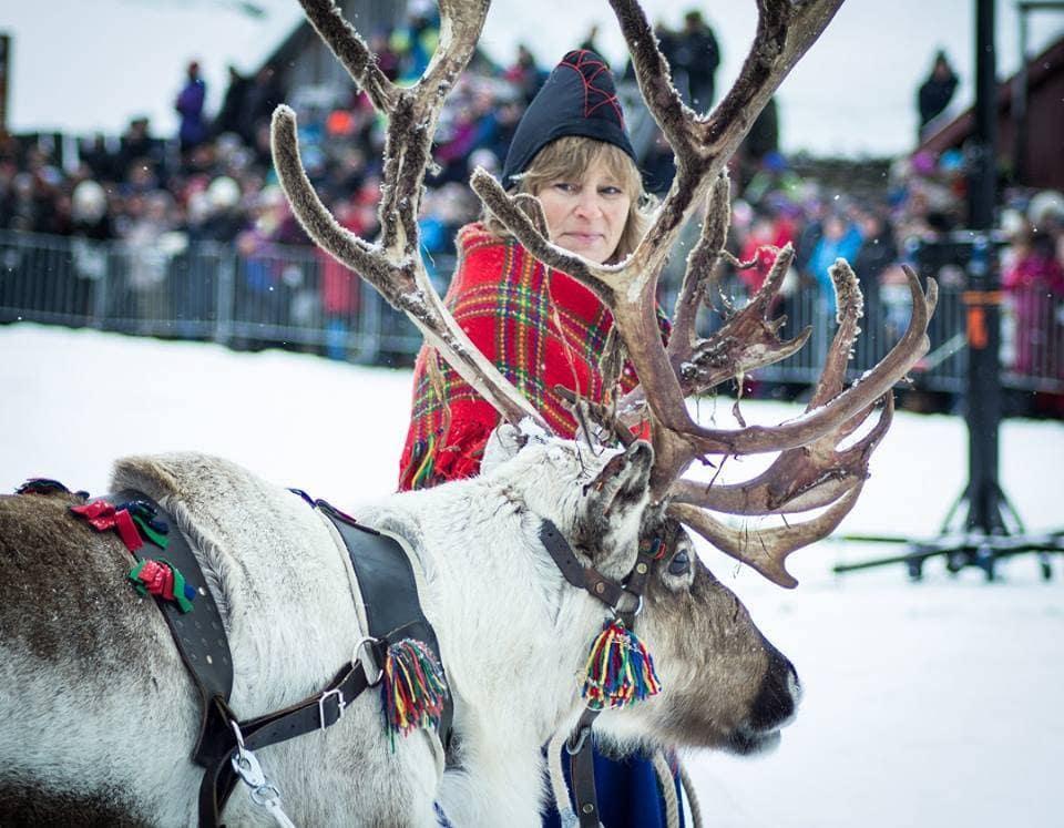 Rørosmartnan Reindeer by Terri Marshall